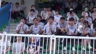 大埔三育中學 2015-2016 水運會 2015-16 T