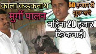 50 हजार से शुरू करें काला कडकनाथ मुर्गीपालन, होगी महिना 20 हजार कि कमाई।poultry farming in india