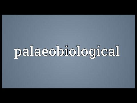 Header of palaeobiological