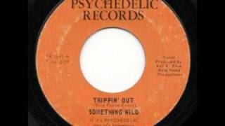 The Something Wild - Trippin