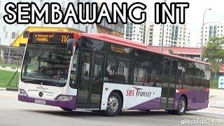 First Day - SBS Transit in Sembawang Bus Interchange - Service 117