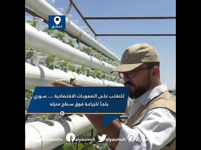 للتغلب على الصعوبات الاقتصادية .... سوري يلجأ للزراعة فوق سطح منزله