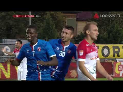 AFC Hermannstadt FC Botosani Goals And Highlights