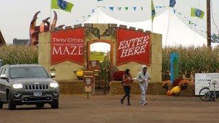 Weekend Showcase: From Corn Mazes to Halloween Fun