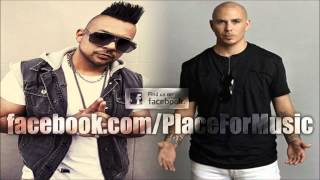 Sean Paul feat  Pitbull   She Doesn t Mind Official Remix