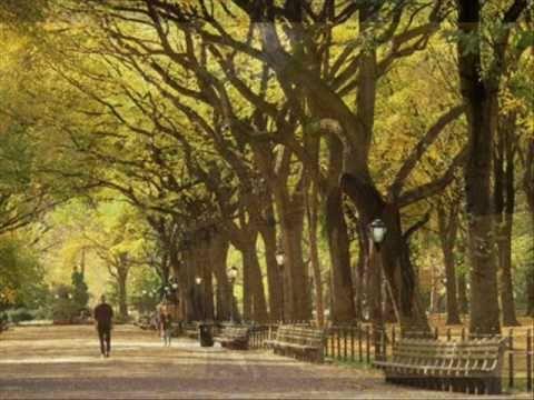 Autumn In New York - Sweet Jazz Trio