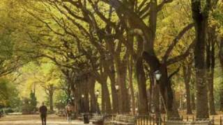 Autumn In New York - Sweet Jazz Trio