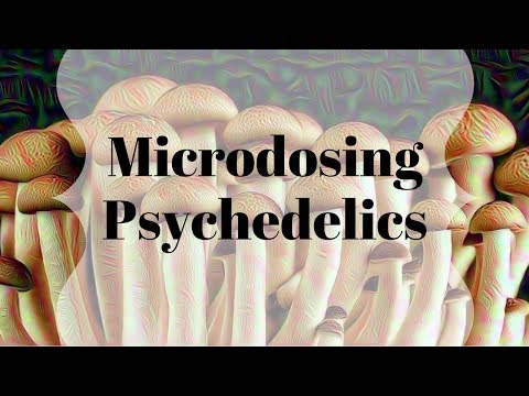 My experience microdosing psychedelics   differences between LSD and Psilocybin
