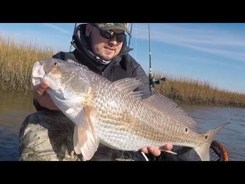LIMIT Of BIG REDFISH (Kayak Sight Fishing!)