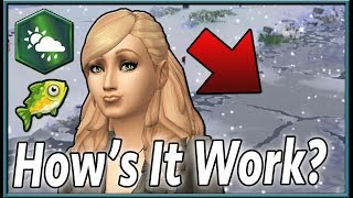 Thanks for all the fish. ➣ The Sims Twitch Channel: https://www.twi...