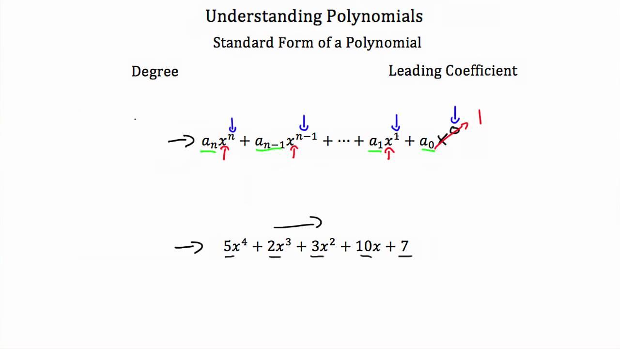 Understanding Polynomials Youtube