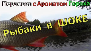 ЖАЛЬ ЧТО РАНЬШЕ ТАК НЕ ЛОВИЛ Осенняя насадка для всей мирной рыбы Насадка для карася леща карпа