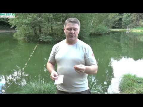 Forellenangeln Anglerspezi Fischen mit Leib und Seele