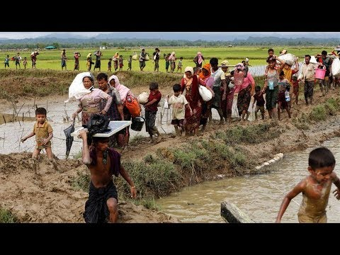 Is the Burmese Military Carrying Out a Genocide Against Rohingya, World
