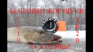 ЖОР ЩУКИ ПЕРВЫЙ ЛЕД 2019 20 НА РЕКЕ ТЬМА ЗАГАРОВ Winter fishing pike Underwater video