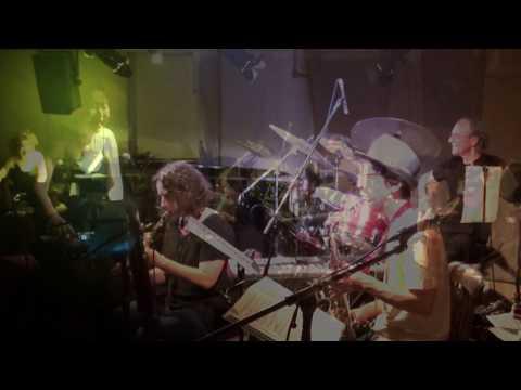 Half the Sky: music of Lindsay Cooper promo OTO 2017