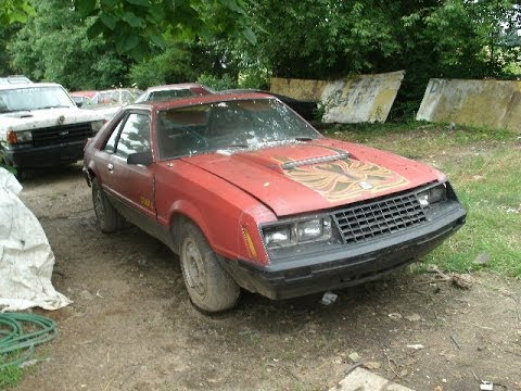 1979 ford mustang cobra turbo 4 cylinder 4 speed manual for sale 2500 call 1 864 348 6079. Black Bedroom Furniture Sets. Home Design Ideas