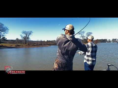 Arkansas Bass Team Trail Lake Hamilton 2018