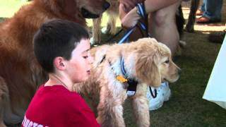 Puppies - Socialization With Christopher