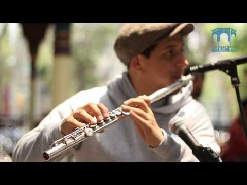 Noir Manouche - Camping Sauvage Aushwitz | Busking Mexico