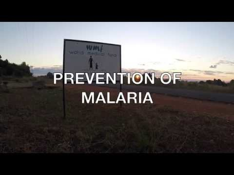 Help save children from malaria in Malawi