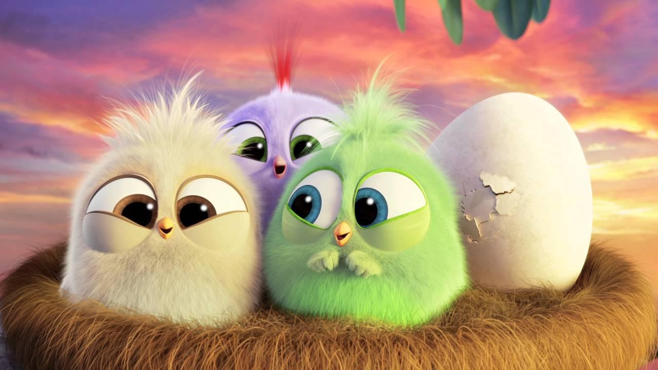 Cute Funny Cartoon Wallpapers Angry Birds Il Film I Pulcini Vi Augurano Buona Festa