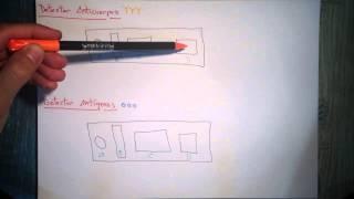 Inmunocromatografía (Dip-Stick) - Intro [Parte 1]