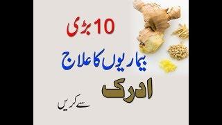 Health Benefits Of Ginger in urdu/Hindi..Adrak Ke Faide/Adrak ky Fawaid