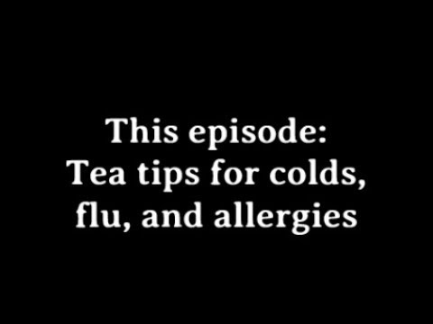 #FridayFAQ: Tea tips for colds, flu, and seasonal allergies!