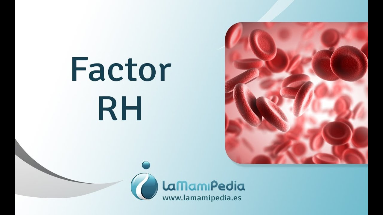 rh factor Overview rhesus (rh) factor is an inherited protein found on the surface of red  blood cells if your blood has the protein, you're rh positive.