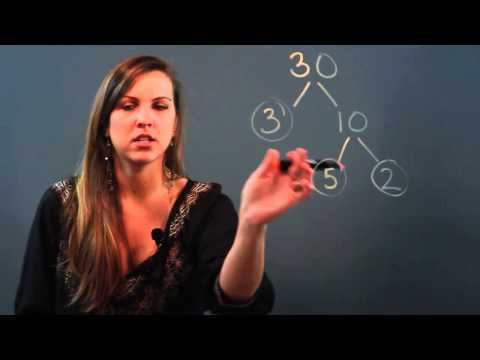 What Is The Difference Between A Factor Tree & Prime Factorization?