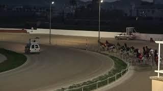 Vidéo de la course PMU PREMI LIDO DE FLEURIAIS