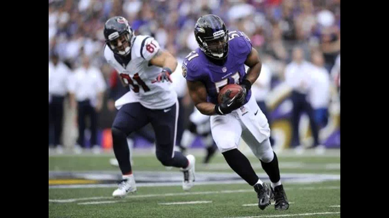 How to Watch The Baltimore Ravens Live Without Cable in ...