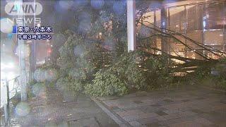 台風15号 千葉市付近に上陸 関東は記録的な暴風(19/09/09)