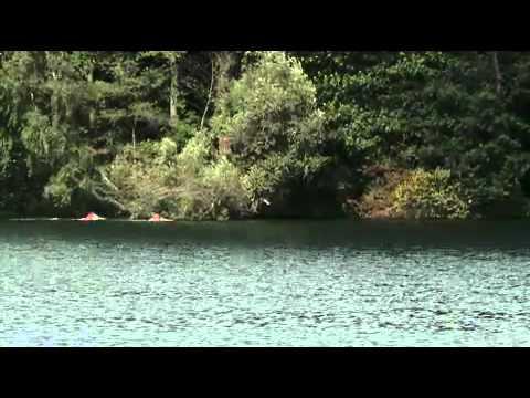 Hoba Baustoffe hoba baustoffhandel präsentiert das 87 strausseeschwimmen mp4