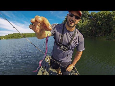 SUMMER BASS FISHING (BIG WORMS-ZOOM OL