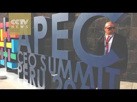 APEC Peru: Lima, Beijing forge strong economic cooperation