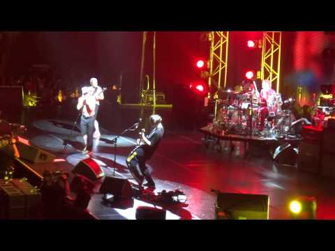 Red Hot Chili Peppers - What In The World (David Bowie cover), Auckland Vector Arena 2013