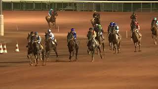 Vidéo de la course PMU PRIX DES CORYDALES
