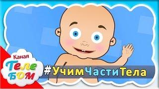 Учим части тела - Развивающий мультфильм для самых маленьких от 12 до 36 месяцев