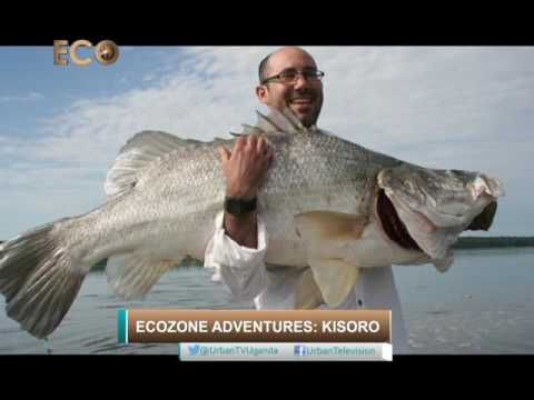 Eco Zone Adventures: Kisoro [4/8]