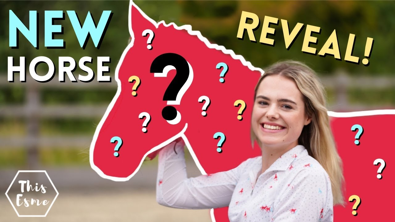 Download Meet My New Rescue Horse! Big Reveal! AD   This Esme
