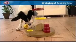 видео развивающие игрушки для собак