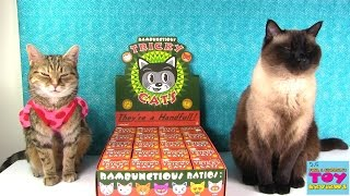 Tricky Cats Full Case Unboxing Kidrobot Toy Review | PSToyReviews