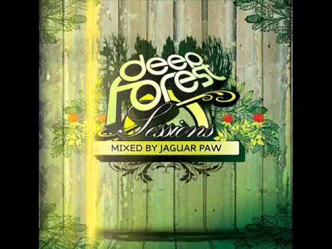 Garth & G Rel - Inhliziyo'Yam (DeepForest Sessions mixed by Jaguar Paw)