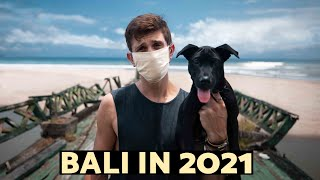 BALI in 2021..the harsh reality