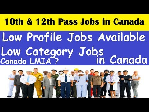10th and 12th Pass People Jobs Available in Canada l Canada Low Category Jobs l Low Profile Jobs