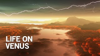 Download Researchers Discover First Signs of Life in the Clouds of Venus!