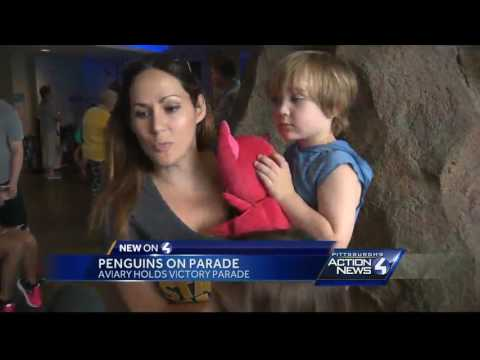 A different kind of Penguins parade at Pittsburgh's National Aviary