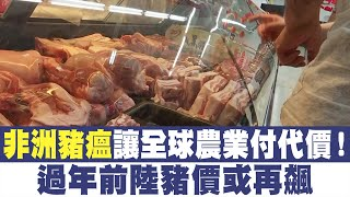 非洲豬瘟讓全球農業付代價!過年前陸豬價或再飆美中明年1月簽協議?科技戰恐同步升級|晚間8點新聞【2019年12月20日】|新唐人亞太電視